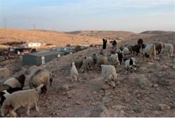 Bedouin Squatters to get land, cash as Settlement law approved